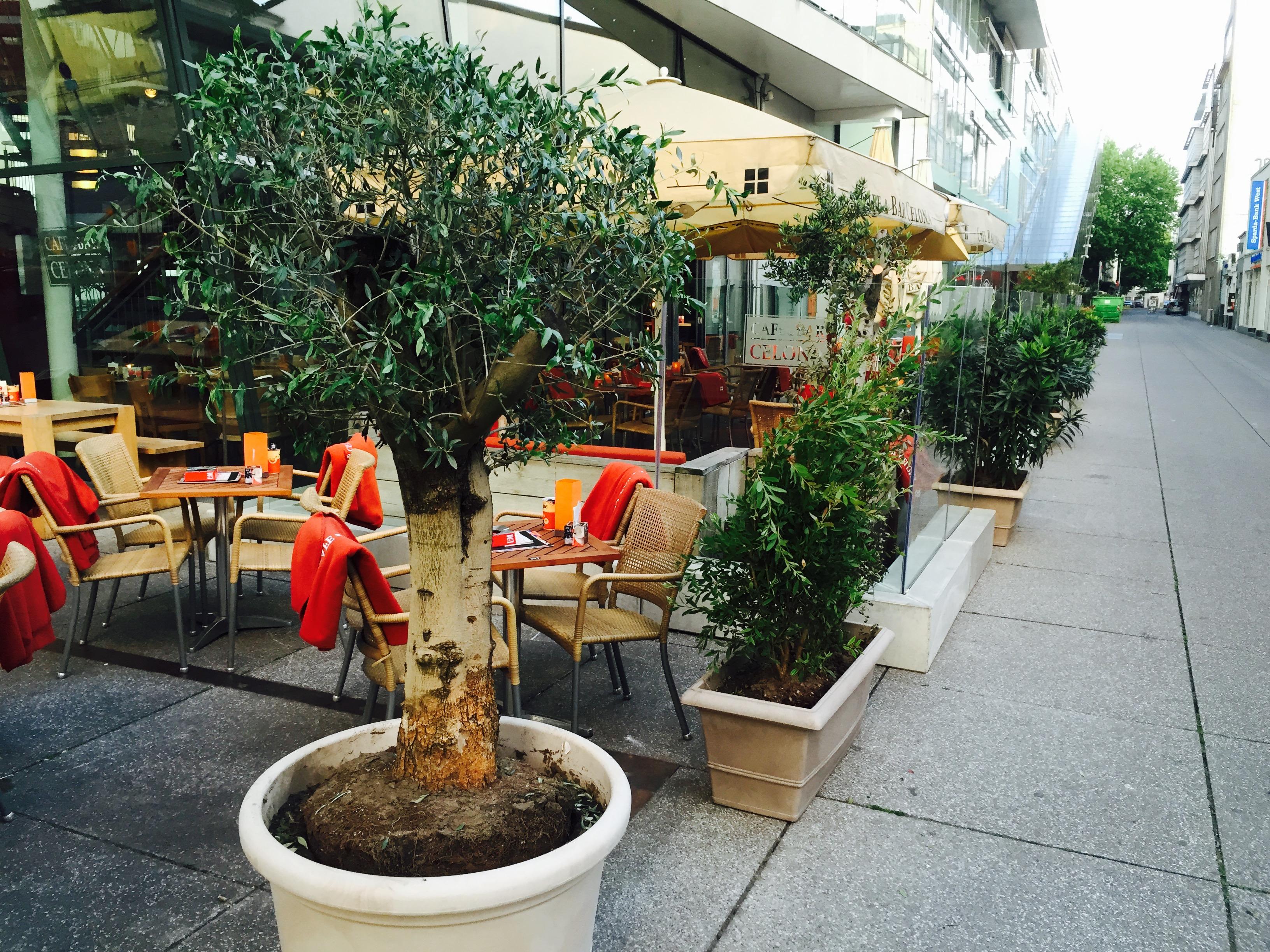Cafe Bar Celona Krefeld